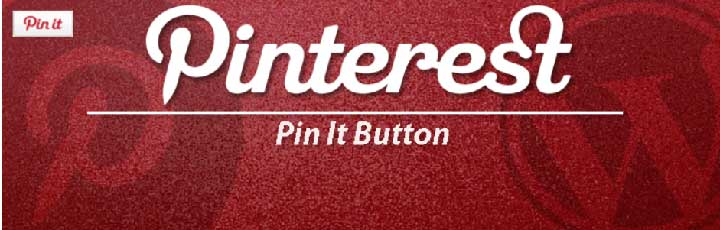 Pinterest pin it button on image hover voor wordpress